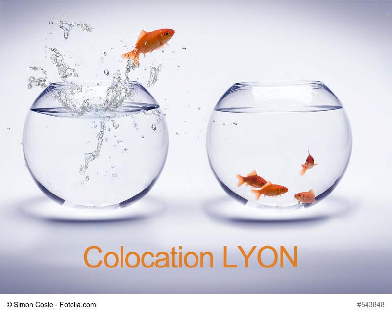 Colocation jeune à LYON: Comment trouver une colocation accessible à LYON?